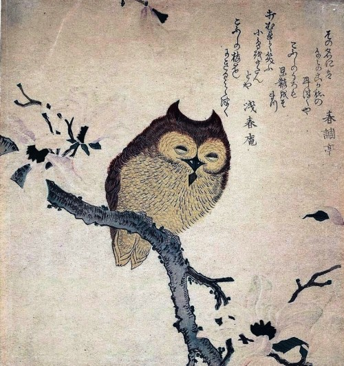 Animal-bird-owl-Japanese-woodcut
